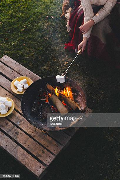 cooking marshmallows on the fire - fire pit stock pictures, royalty-free photos & images