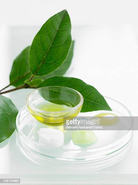 Cooking oil and leaves