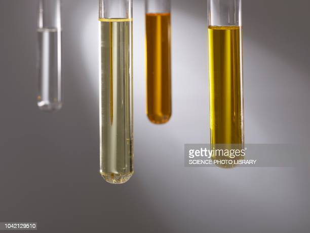 cooking oils in test tubes - coconut oil stock pictures, royalty-free photos & images