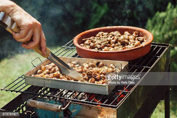 Cooking snails on the barbecue