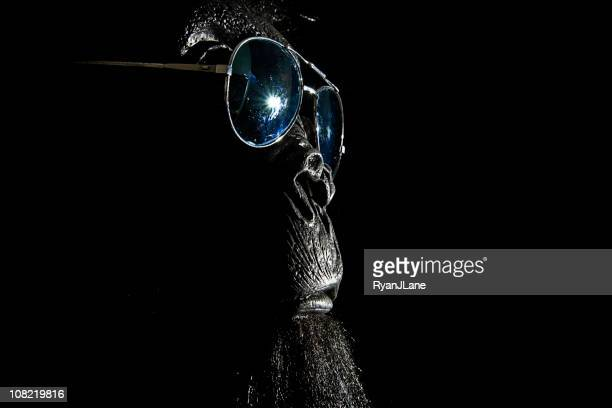 cool sunglasses gorilla with copy space - monkey suit stock pictures, royalty-free photos & images