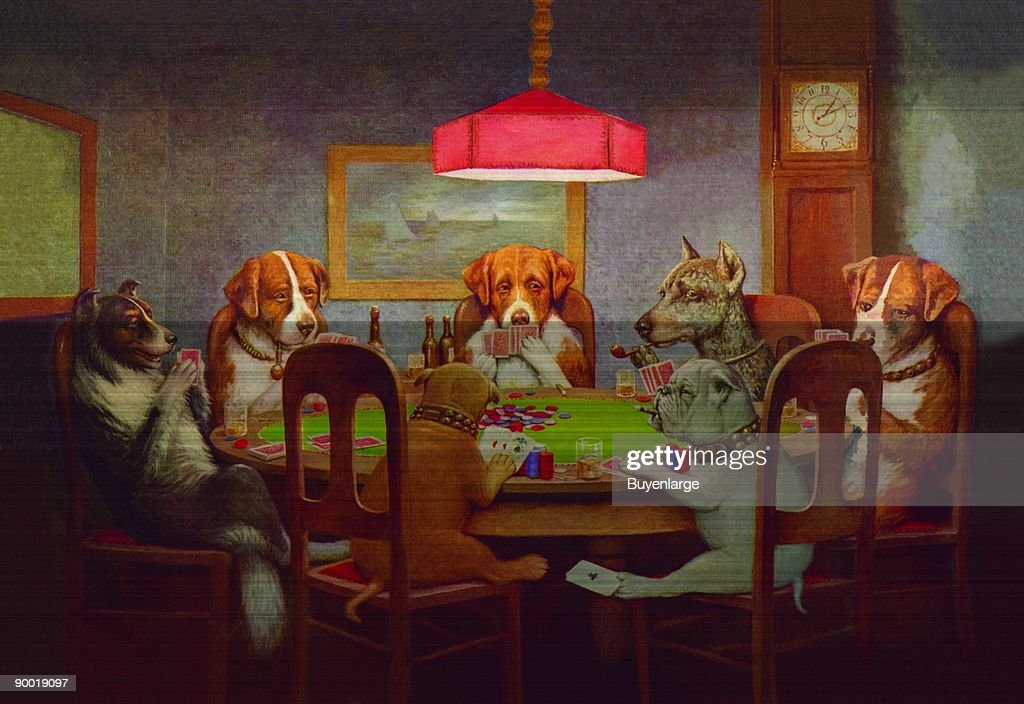Passing the Ace Under the Table (Dog Poker) : News Photo