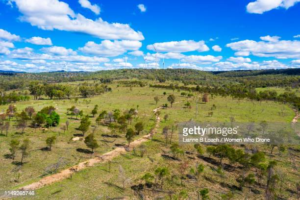 coopers gap - lianne loach stock pictures, royalty-free photos & images