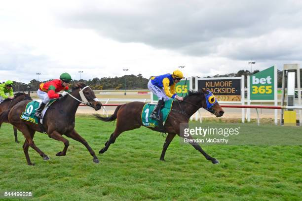 Cooter Cha Cha ridden by Declan Bates wins the CUB Maiden Plate at Kilmore Racecourse on September 09 2017 in Kilmore Australia
