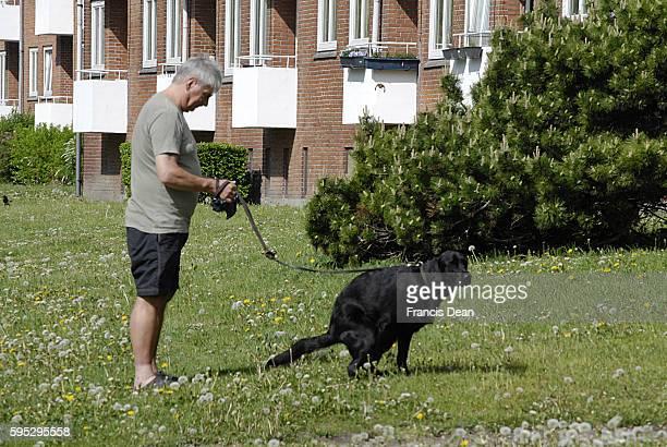 Image result for images of man walking dog pooping