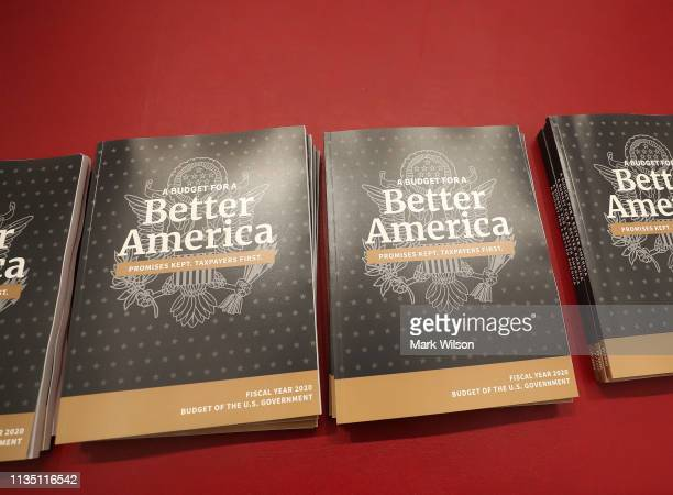 Copies of volume 1 of President Donald Trump's new budget for Fiscal Year 2020 that has been delivered to the House Budget Committee, on March 11,...