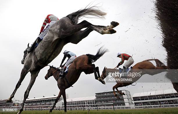 Copper Bleu ridden by Richard Johnson jumps the second to last fence ahead of Othermix and China Rock in the Jewson Novices' Handicap Steeple Chase...