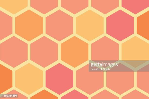 coral and yellow honeycomb - honeycomb stock pictures, royalty-free photos & images