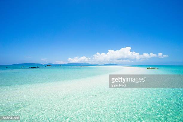 coral cay beach and clear tropical water, sekisei lagoon, japan - 石垣 ストックフォトと画像