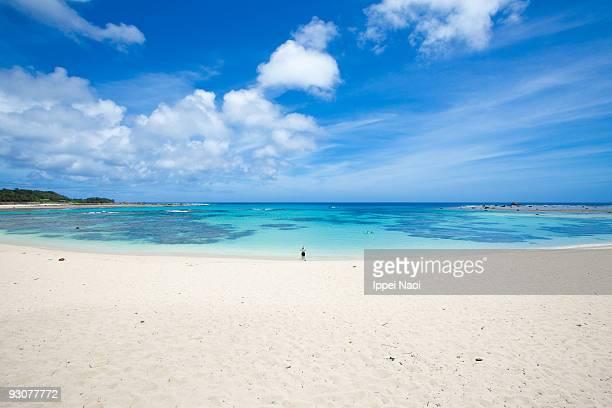 coral cove beach on the japanese tropical island - 鹿児島県 ストックフォトと画像