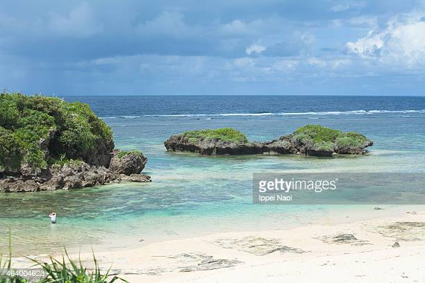 coral lagoon beach and clear water, iriomote-jima - 潟湖 ストックフォトと画像