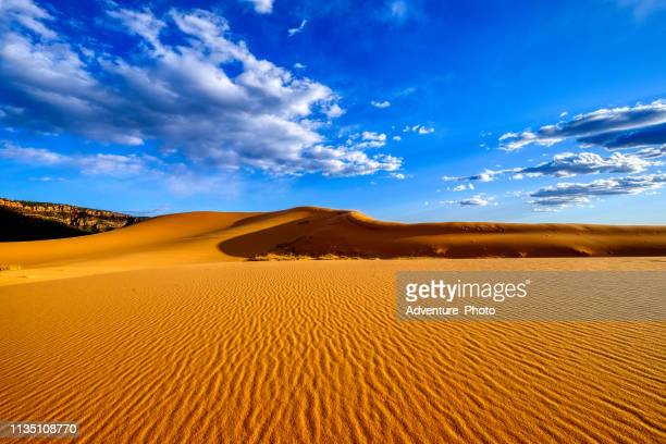 coral pink sand dunes - sandy utah stock pictures, royalty-free photos & images