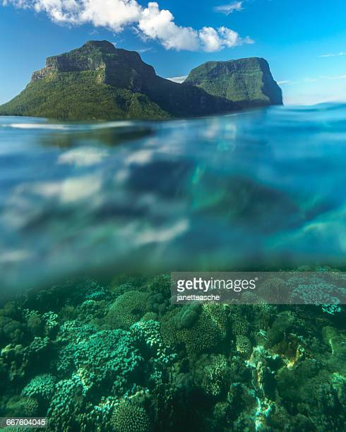 Coral reef and mountains, Lord Howe Island, New South Wales, Australia