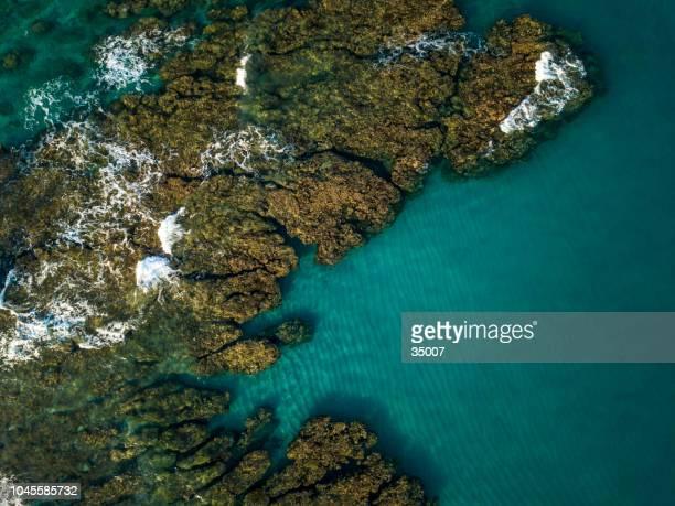 arrecife de coral, boucan canot, isla reunión, islas mascareñas - isla reunion fotografías e imágenes de stock