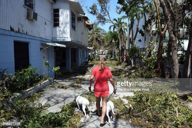 Coral Sands Trailer Park resident Julie Howell walks her two dogs through debris following Hurricane Irma on Tuesday September 12 2017 in Key Largo FL