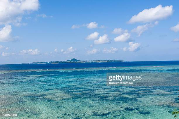 coral sea n island - kazuko kimizuka stock pictures, royalty-free photos & images