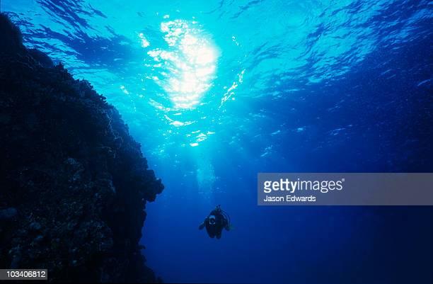 A scuba diver with a digital video camera explores a tropical reef.