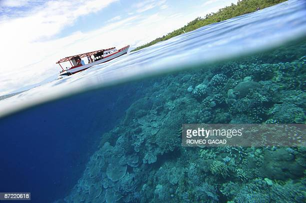 Corals and mangrove grow at the protected Bunaken Island marine national partk in Manado on May 14 2006 Rising water temperatures sea levels and...
