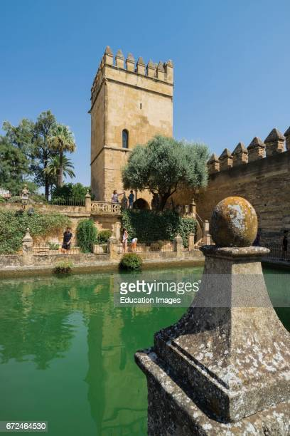 Cordoba Cordoba Province Andalusia southern Spain The pond in the gardens of the Alcazar of the Christian Kings Alcazar de los Reyes Cristianos The...