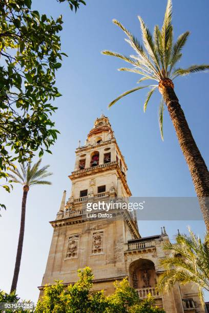 Cordoba mosque bell tower