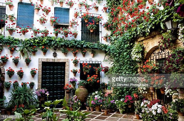 cordoba, que más - courtyard - fotografias e filmes do acervo