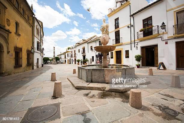 Cordoba square and street. Andalucia, Spain, Europe