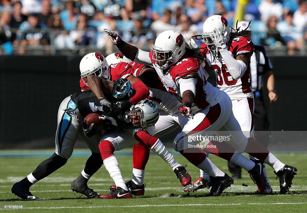Arizona Cardinals v Carolina Panthers