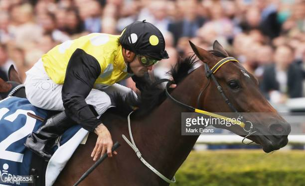 Corey Brown on In Her Time wins race 7 during The Everest Day at Royal Randwick Racecourse on October 14 2017 in Sydney Australia