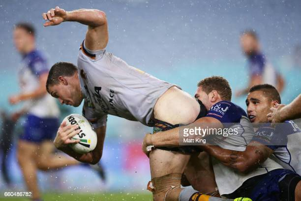 Corey Oates of the Broncos is tackled by Brenko Lee of the Bulldogs during the round five NRL match between the Canterbury Bulldogs and the Brisbane...