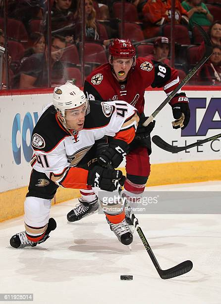 Corey Tropp of the Anaheim Ducks skates with the puck ahead of Christian Dvorak of the Arizona Coyotes during the preseason NHL game at Gila River...