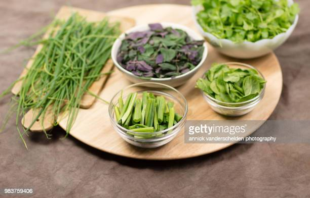 Coriander, chives, spring onion, spinach and Ocimum basilicum 'Magic Mountain'