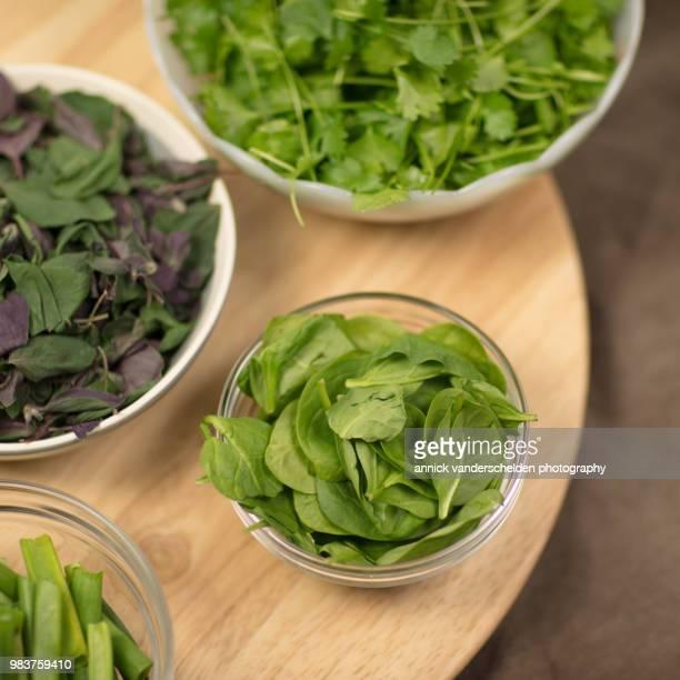 Coriander, spring onion, spinach and Ocimum basilicum 'Magic Mountain'