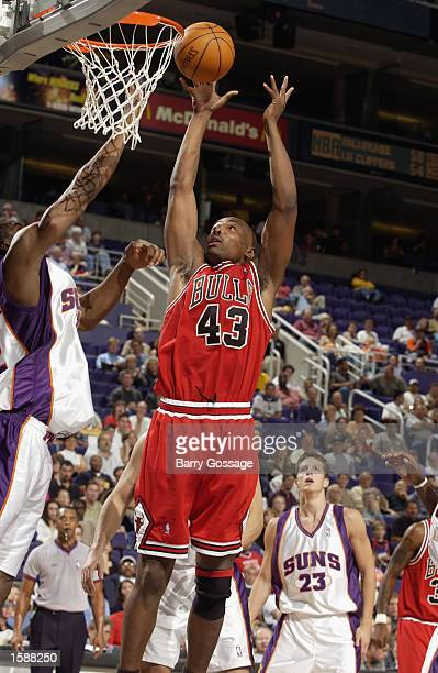 Corie Blount of the Chicago Bulls jumps for the loose rebound during the preseason game against the Phoenix Suns at the America West Arena on October...