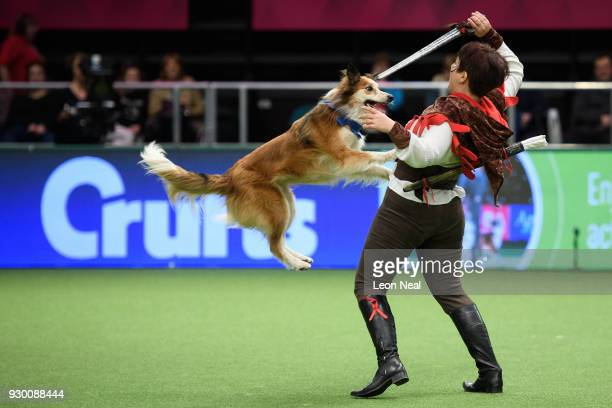 """Corinne Baron and """"Galatee Du Clos De Netilia"""" take part in the Heelwork to Music competition on day three of the Cruft's dog show at the NEC Arena..."""