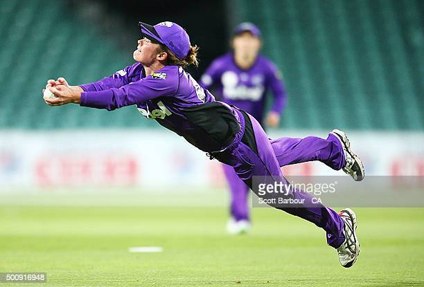 Corinne Hall of the Hurricanes dives to take a catch to dismiss Rachel Priest of the Renegades during the Women's Big Bash League match between the...