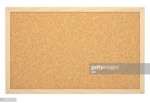 Cork Board with Frame [empty]