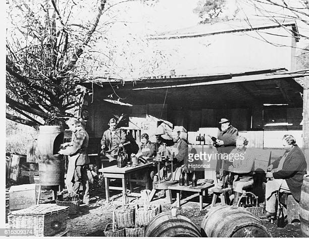Corking champagne at Buena Vista Vineyard Sonoma CA in the early 1870's
