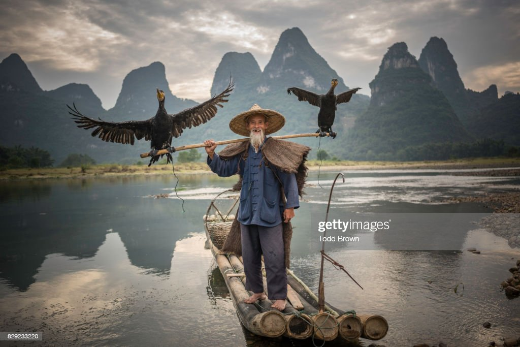 Cormorant Fisherman stands with birds on boat : Stock-Foto