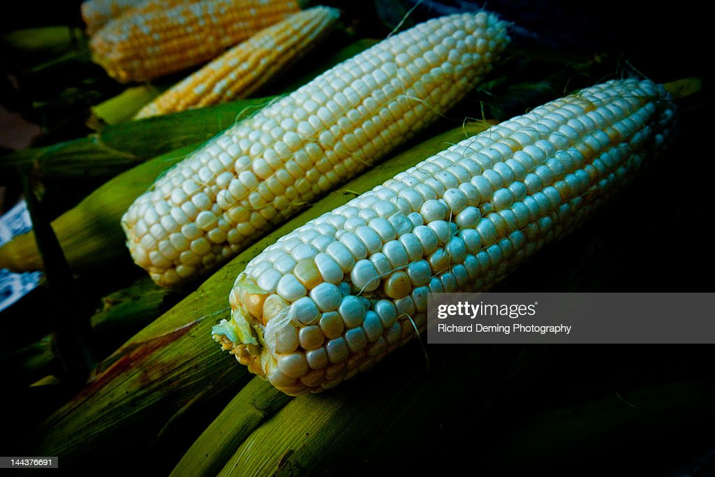Corn at farmer's market : Stock Photo