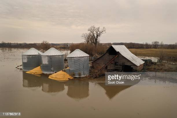 Corn burst from a grain bin which was soaked with floodwater on March 23 2019 near Union Nebraska Damage estimates from flooding in Nebraska top $1...