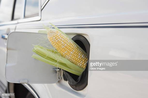 Corn cob in car gas tank filler
