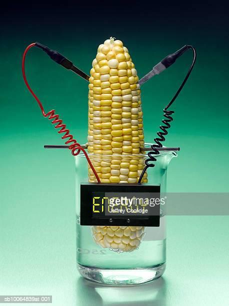 Corn generated energy
