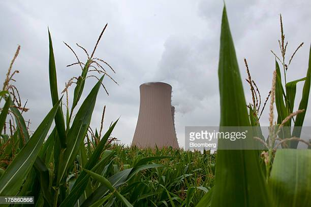 Corn grows in a field as nearby cooling towers emit vapor at a nuclear power plant operated by EON SE in Grohnde Germany on Wednesday Aug 07 2013...