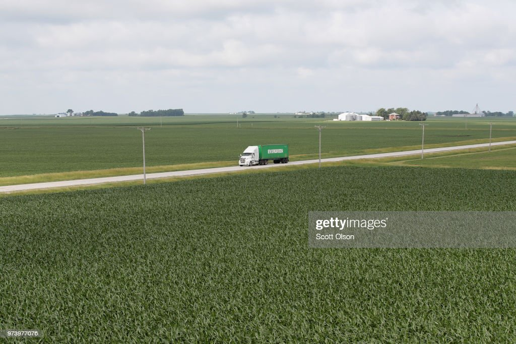 Corn grows in a field on June 13, 2018 near Dwight, Illinois. The condition of U.S. corn and soybean crops in most regions is far outpacing last year's condition at this point in the season.