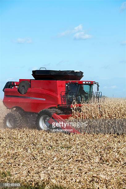 corn harvesting - combine harvester stock pictures, royalty-free photos & images
