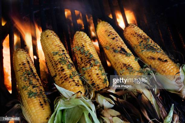 Corn on cob covered with thyme on barbeque