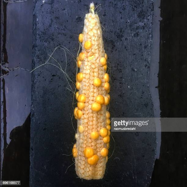 Corn on the cob on a wet table
