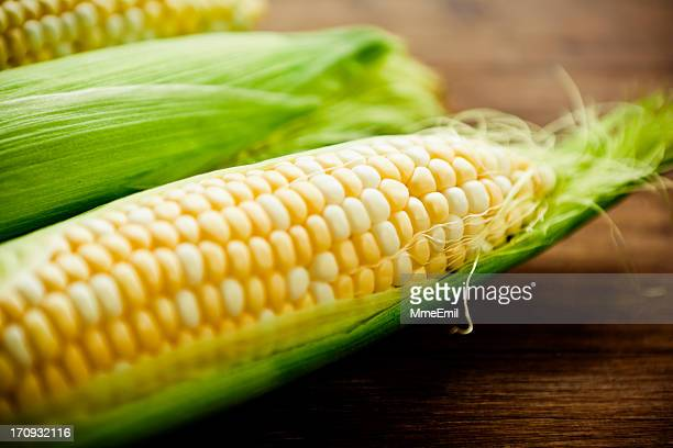 corn on the cob - corn stock pictures, royalty-free photos & images