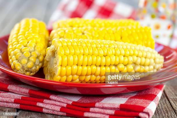 corn on the cob - boiled stock pictures, royalty-free photos & images