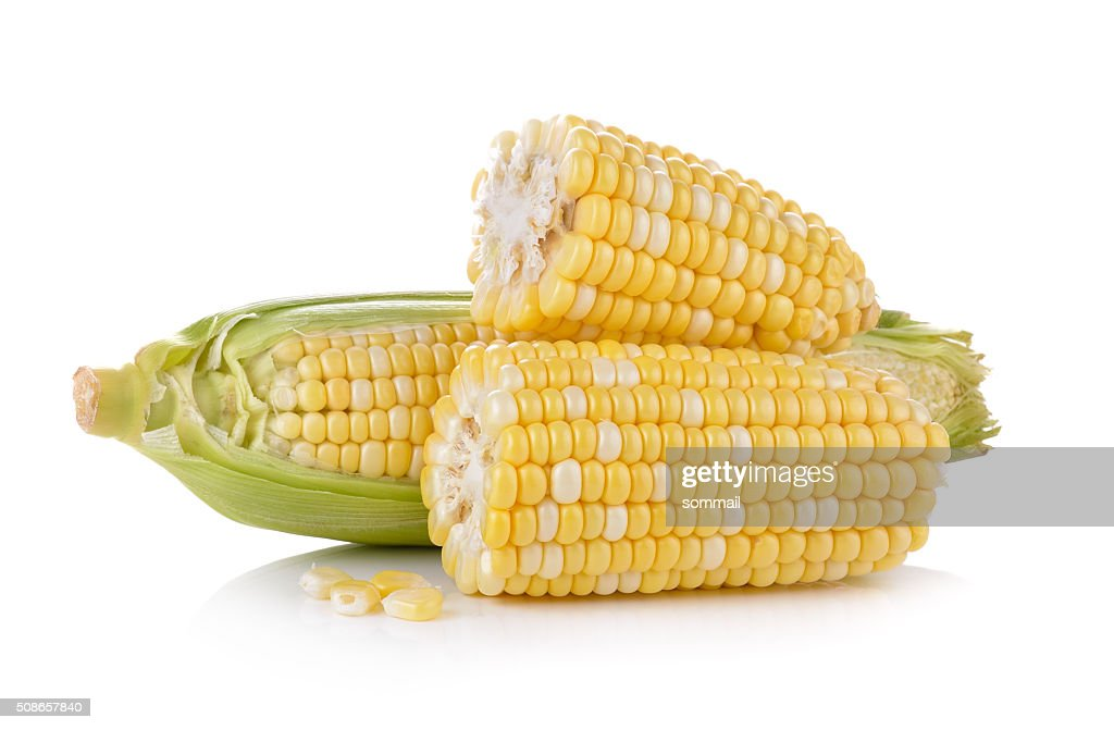 corn on white background : Stock Photo